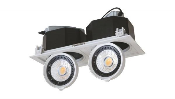 2er LED Downlight, schwenkbar, 20W, DF-81002
